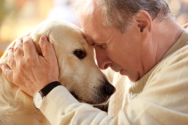 How Seniors Benefit from Emotional Support Animals